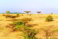 Farmland landscape in Ethiopia Stock Photo