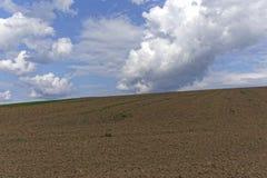 Farmland on a late summer day Royalty Free Stock Photos