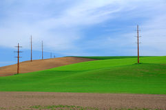 Farmland and light poles Royalty Free Stock Photo