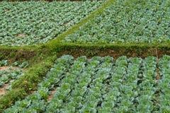 Farmland between Luang Prabang and Vang Vieng in Laos royalty free stock photography