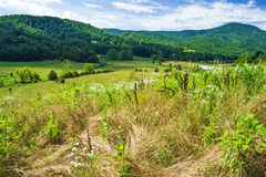 Farmland with Mountains Stock Photo