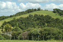 Farmland on North Island, New Zealand Stock Images