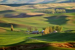 Farmland in Palouse Washington Royalty Free Stock Photo