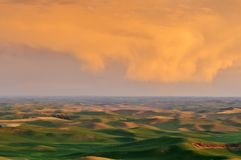 Farmland in Palouse Washington Royalty Free Stock Image
