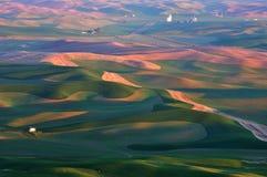 Farmland in Palouse Washington Stock Photo
