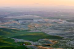 Farmland in Palouse Washington Stock Image