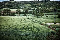 Farmland Perugia Stock Images