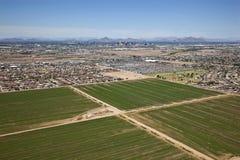 Farmland Phoenix Royalty Free Stock Photos