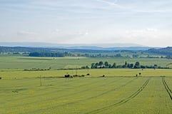 Farmland. Royalty Free Stock Photo