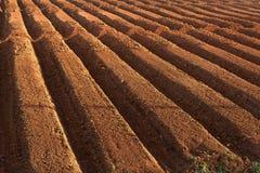 farmland ploughed στοκ εικόνα
