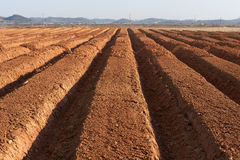 farmland ploughed στοκ φωτογραφία με δικαίωμα ελεύθερης χρήσης