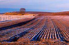 farmland ploughed στοκ φωτογραφία
