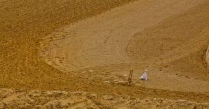Farmland plow Stock Photos