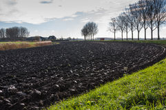 Farmland plowed in curves Royalty Free Stock Photo