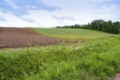Farmland plowed and sown, cultivated field. Cultivated field, farmland plowed and sown stock photography