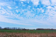 Farmland plowed and sown, cultivated field. Cultivated field, farmland plowed and sown stock images