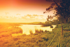 Farmland pond in Australia Royalty Free Stock Photo
