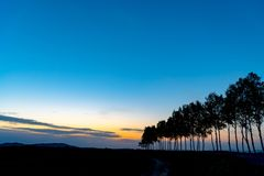 Farmland, Row of Trees on hill with blue sky background in dusk. Silhouette view nature landscape royalty free stock photo
