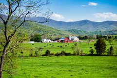 Farmland in Rural America Royalty Free Stock Image