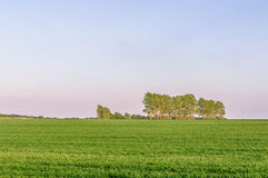 Farmland in rural Suffolk, UK Stock Image
