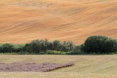 A farmland scenery with a bushy ditch. A brownish farmland scenery with a green bushy ditch in the middle stock images