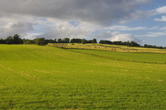 Farmland in Scotland Royalty Free Stock Photos
