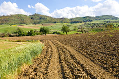Farmland, Sicily. Some farmland ready to be cultivated in central Sicily near the town of Piazza Armerina Stock Photo
