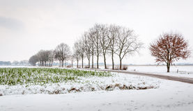 Farmland in the snow Stock Photography