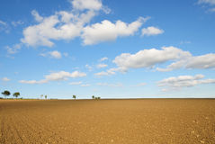 Farmland Soil and Blue Sky. Rural Landscape of Bare Earth with a Beautiful Blue Sky Above Royalty Free Stock Photography