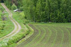 Farmland somewhere in Finland. Shot taken at middle of summer Stock Photo