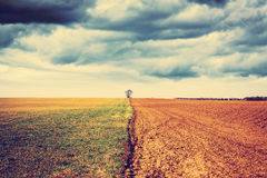 Farmland with stormy sky Stock Photos