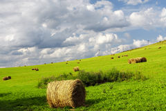 Farmland with straw bales Stock Photography