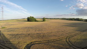 Farmland summer end fields with wheat, aerial view stock footage