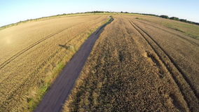 Farmland summer end landscape with bad road, aerial view stock video footage