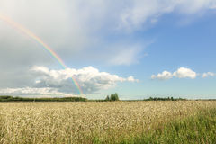 Farmland summer landscape with rainbow, cumulus clouds and cereal field royalty free stock photo