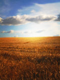 Farmland sunset Royalty Free Stock Image