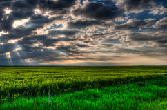 Farmland at Sunset Royalty Free Stock Photography