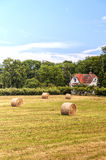 Farmland in Sweden Royalty Free Stock Photos