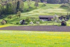 Farmland - Switzerland. Royalty Free Stock Photography