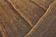 Farmland Stock Photos