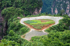 Farmland on top of mountain of Zhangjiajie national park Stock Image