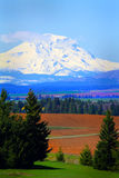 Farmland under Mt Adams Stock Images
