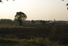 Farmland. Under the setting sun Royalty Free Stock Photography