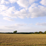 Farmland View Stock Photos