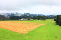 Farmland in the Austria Royalty Free Stock Image
