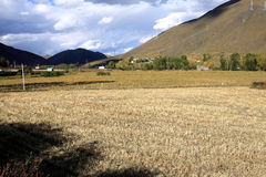 Farmland. In west China. The altitude there is around 3300m from sea level Stock Photo