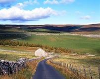 Farmland, Yorkshire Dales. Country lane edged with dry stone walling, Yorkshire Dales, North Yorkshire, England, UK, Great Britain, Western Europe Royalty Free Stock Image