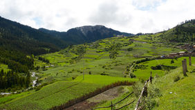Farmland of Zhagana Stock Images
