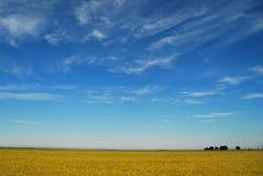 Farmlands. Farm landscape with wheat field Royalty Free Stock Image
