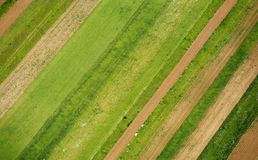 Farmlands Stock Image